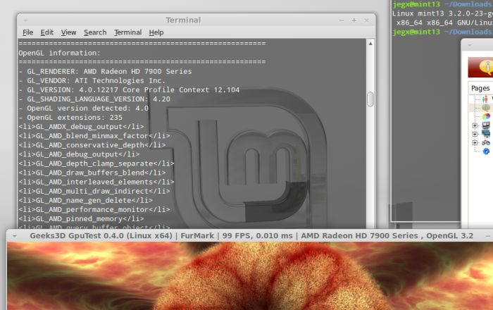 AMD Cataylst 13.4 for Linux, OpenGL extensions