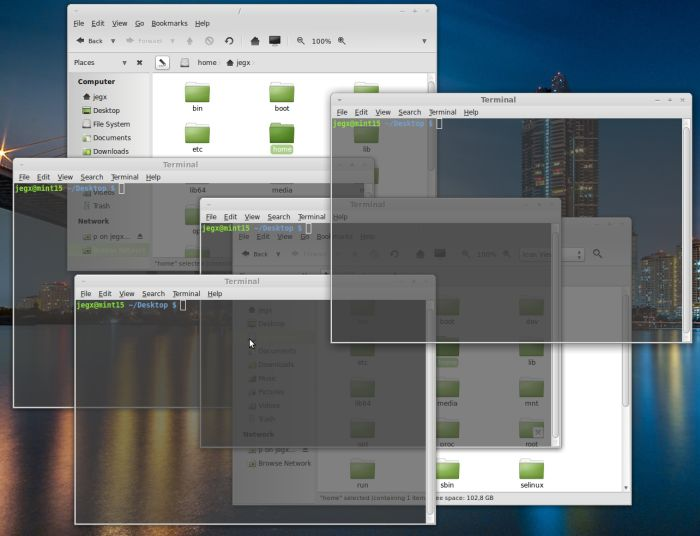Linux Mint 15 - compositing enabled