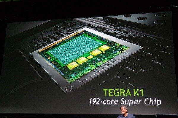NVIDIA Tegra K1 192-core processor